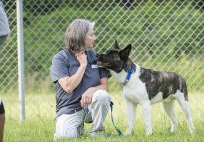 11-Pitner Dog Class - Sean Meyers Photo